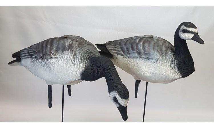 Комплект сминаемых чучел  Белощекая  казарка Oscar Decoys 3D